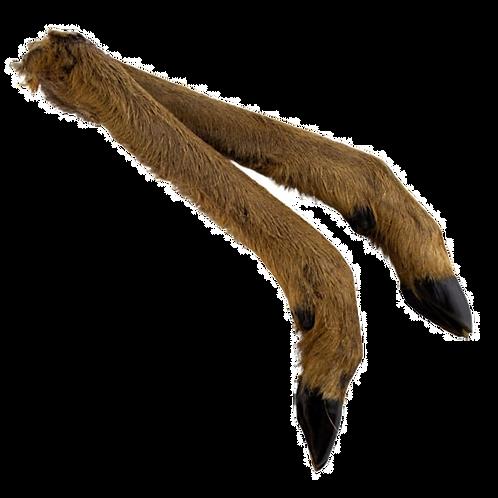 Deer Leg With Hair