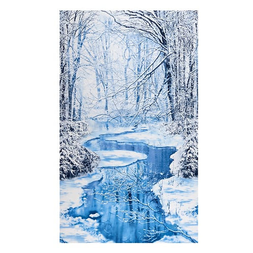 Winter Wonderland Panel - Winter hike