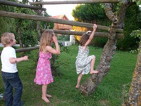 climbing poles.jpg