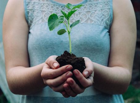 Planting Devotional
