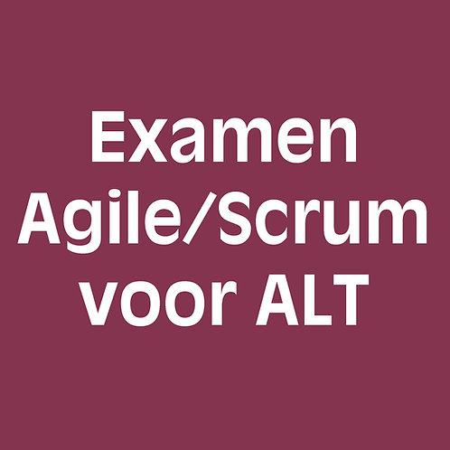Examen agile/scrum voor agile-lean teamcoaches