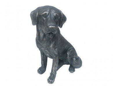 Sitting Dog - Labrador
