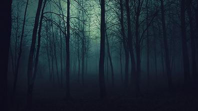 Dark Woods.jpg