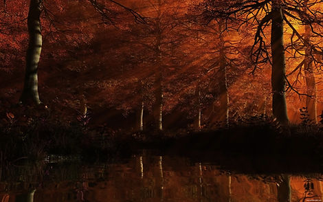autumn-red-colored-forest-wallpaper-34.j