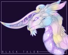 blacktalonprint_web.jpg