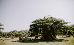 117 - Sayulita Taller de Bambu-118.jpg