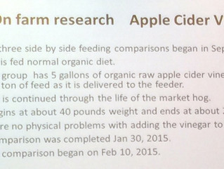 Summary of Experiment- Apple Cider Vinegar Research  By Tom Franzen for Practical Farmers of Iowa.
