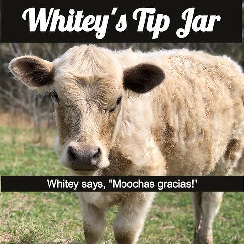 Whitey's Tip Jar
