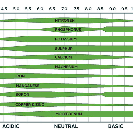 Factors influencing nutrient availability: soil pH