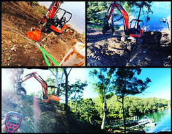 Daley Land Clearing