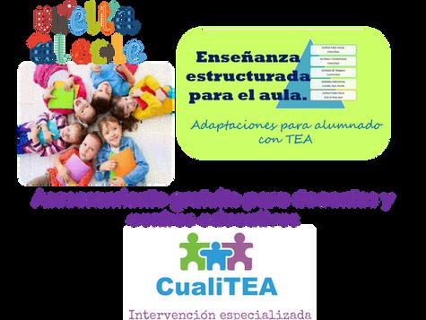 Estrategias prácticas para el acceso  al aula de alumnado con TEA. Enseñanza estructurada (parte 1)