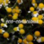 ApothepurityhomepageecoconsciousSMALL.jp