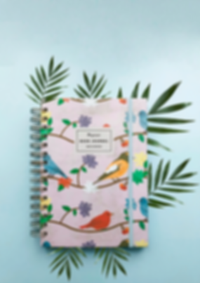book journal fundo.png