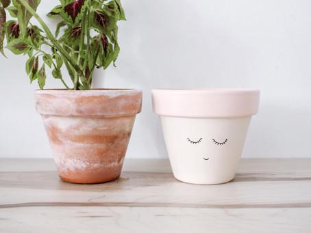Porque é necessário impermeabilizar os vasos?