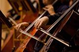 Cello .jpg