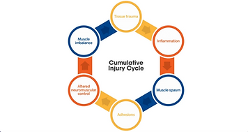 The Cumulative Injury Cycle