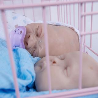 Primate Babies