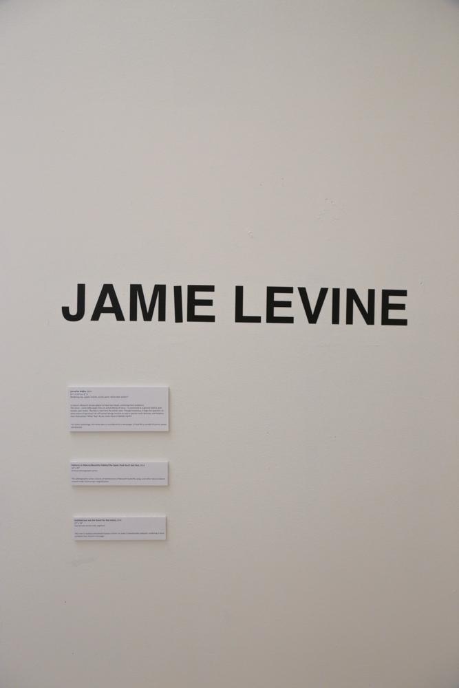 Jamie (56 of 15).jpg