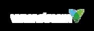 visionstream-logo white horizontal.png