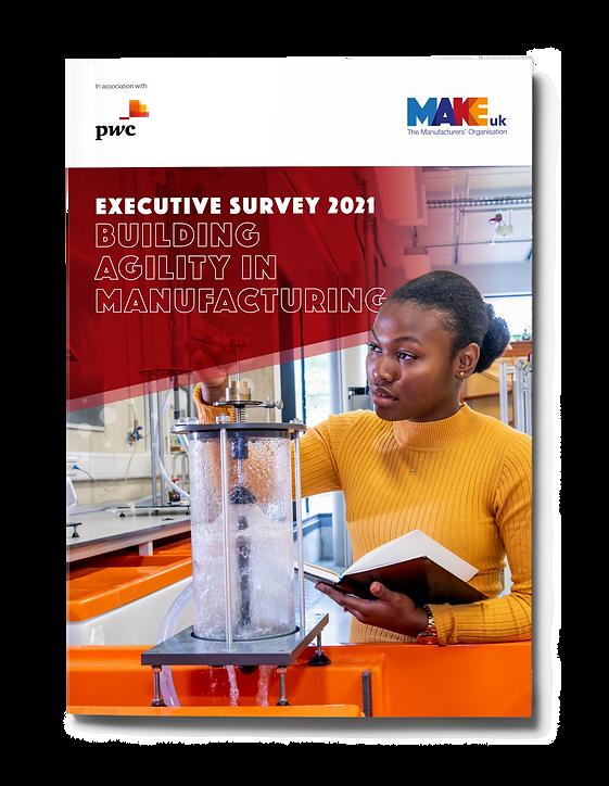 Exec Survey Cover 1.png