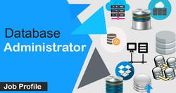 Database Administration Development