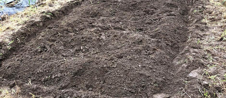 土を耕しました