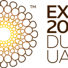 """discovering """"Dubai & EXPO"""""""
