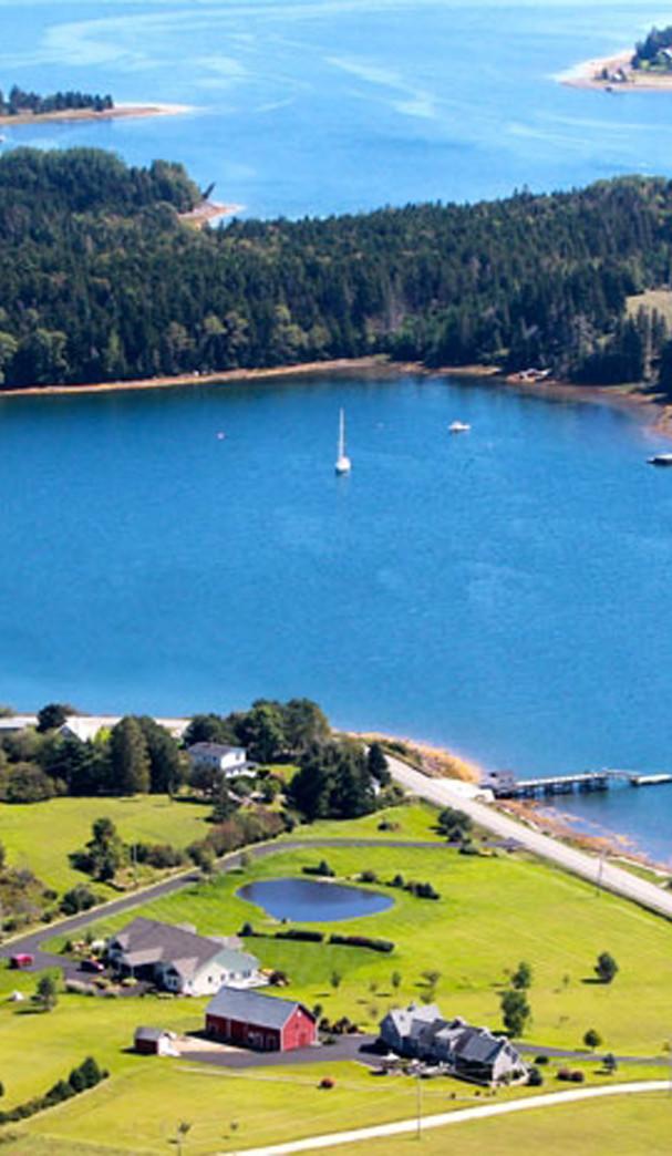 aerial view from Gwynne Tomothy.jpg