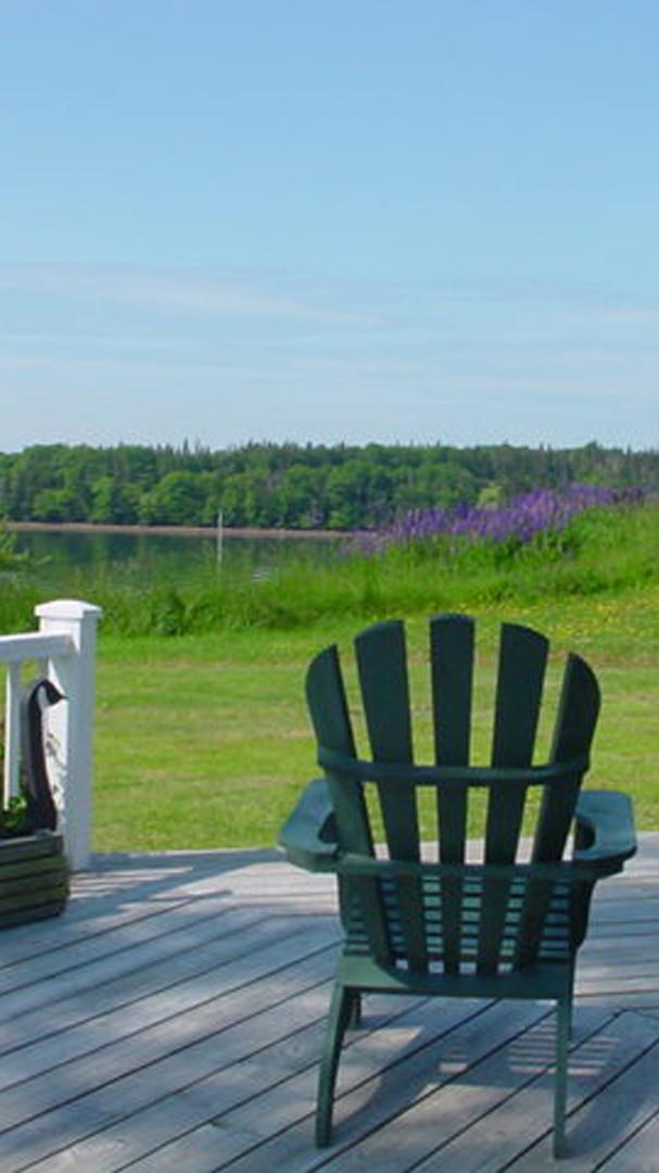 Adirondack chairs & lupins 005.jpg