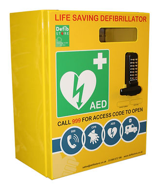DEFIBRILLATOR MILD STEEL LARGE CABINET C/W LOCK & ELECTRICS