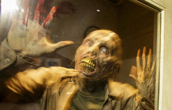 Walking Dead undead