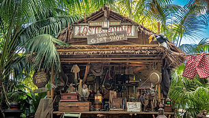 As If Jungle Cruise Needs More, Well, Humor! Now it Does...