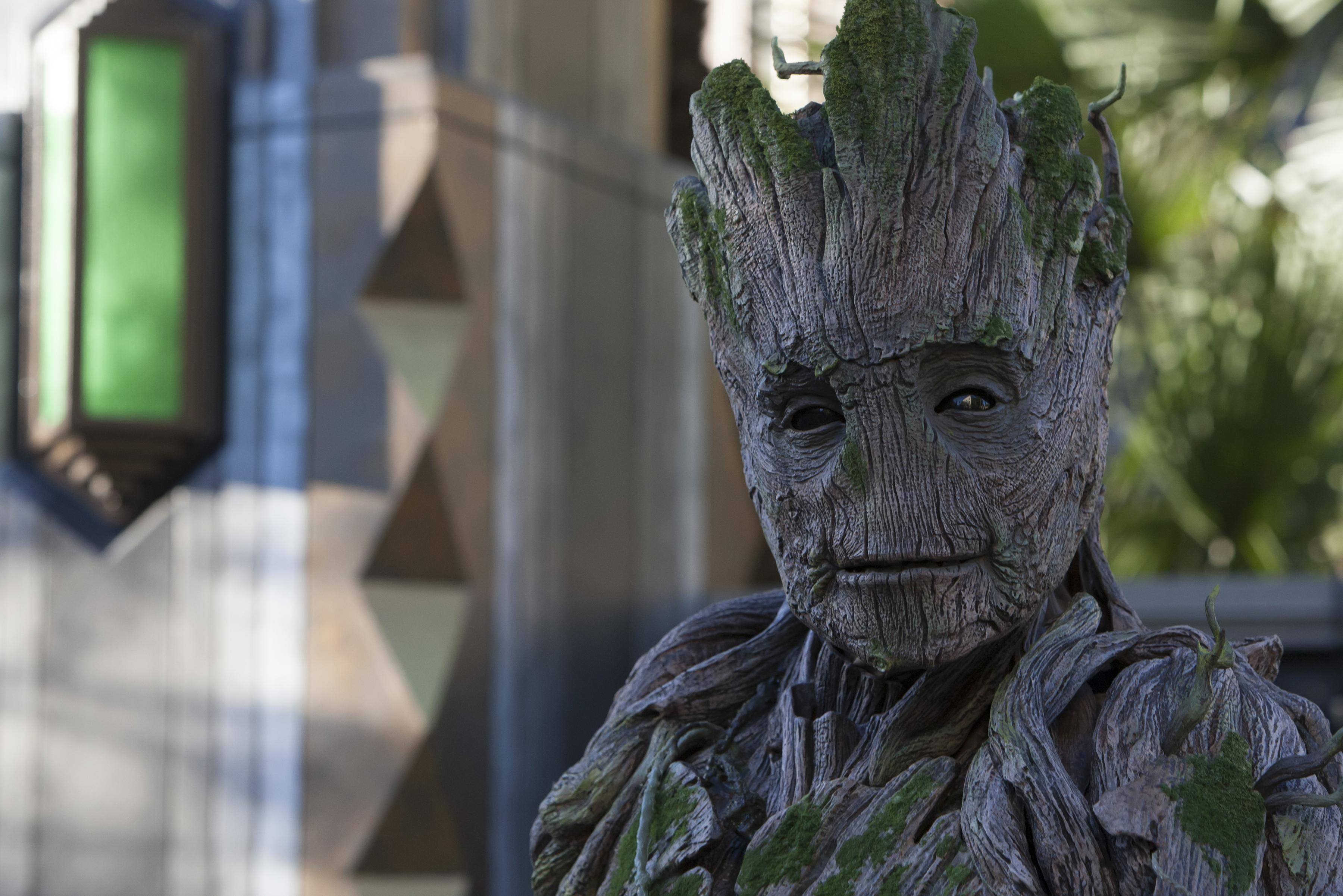 Meet Groot