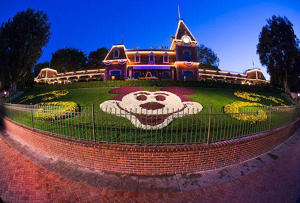 Mickey's Flower Portrait