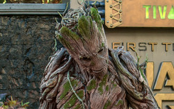 Groot greets guests