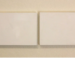 Microcosms: Two Figures In A White Field