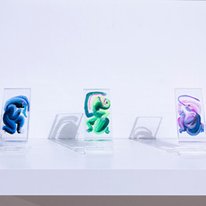 Giant Ground Sloths, Handheld Size #1-5 (installation view)