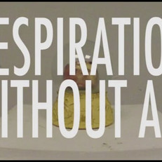 Resipiration Without Air