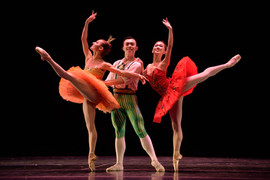Art Ballet Theater of Florida.jpg