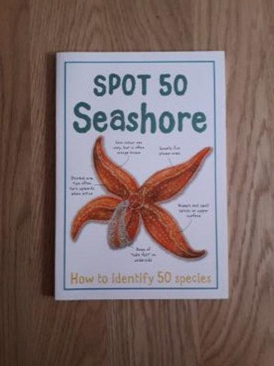 Spot 50 at the Seashore