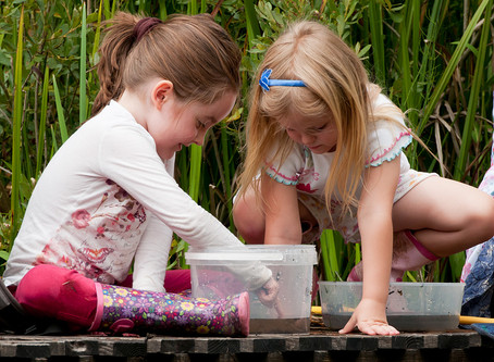 This month we're working with Herts & Middlesex Wildlife Trust to promote reading & wild spaces