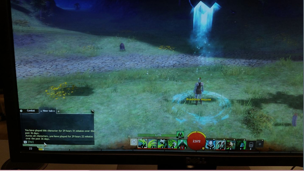 From the real world to the virtual - Guild Wars 2