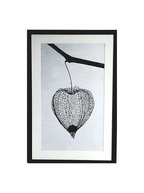Tableau Amour en Cage collection NATURE 40 x 60 cm