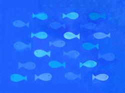 Small Fish - GOTLAND