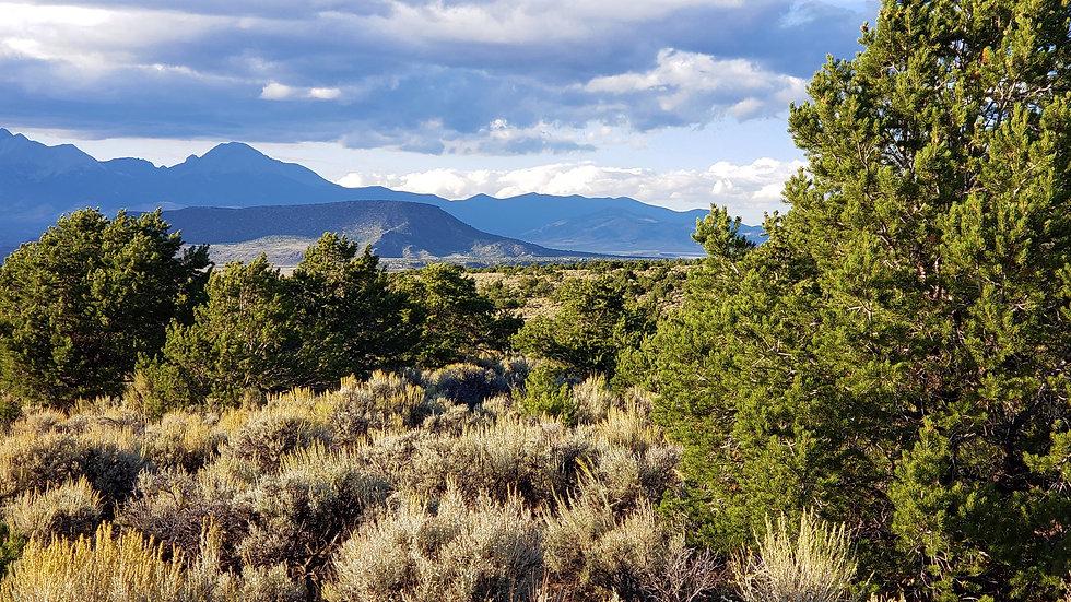 Costilla County - S.D.C.Ranches - Juavez Road Lot 1252 (5.3 acres)