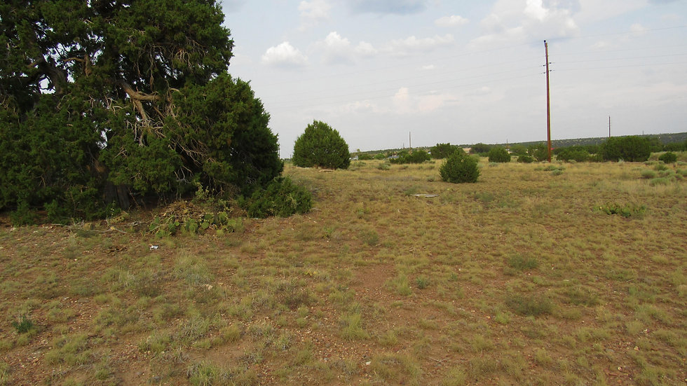 Apache County, Arizona - Concho Valley - Bonita Ln. Lot 186C (.34 acres)