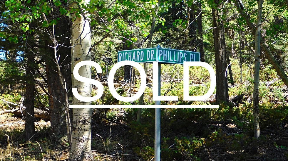 Phillips Place Lot 676