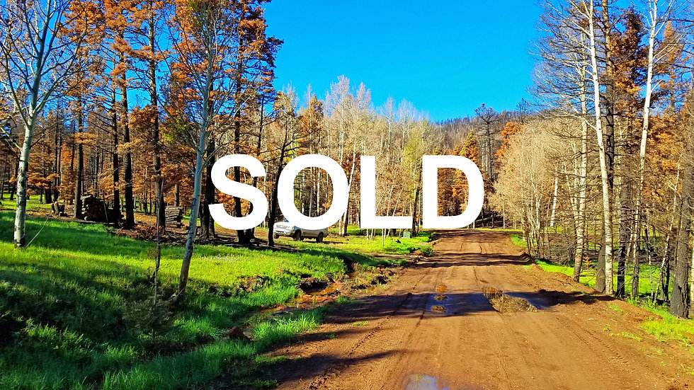 Foy Place Lot 999 (1.076 acres) Well and Power Connected!!