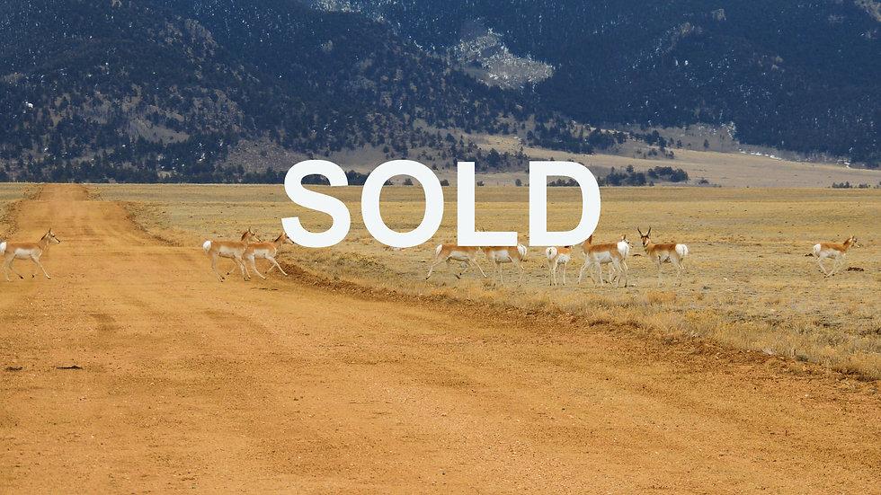 Park County, Colorado - South Pk Ranches - 8561 Larimer Rd. (5 Acres)