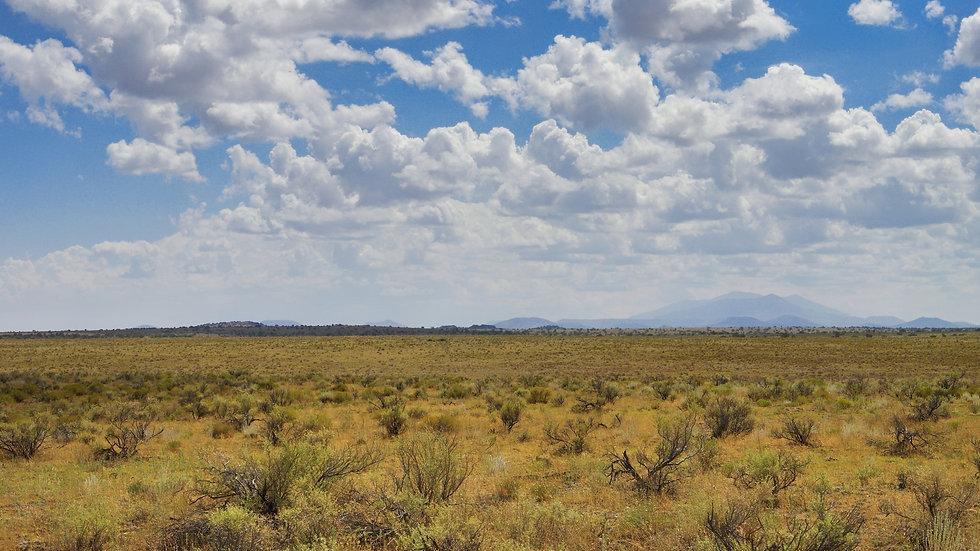 ARIZONA - Coconino County - South Prickly Pear Wash Road (160-acres)